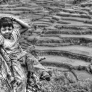 Boy And Rice Terraces @ Philippines