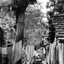 Alleyway @ India