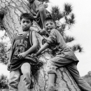 Three Boys Around A Tree @ Philippines