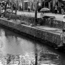 Riverside Of Kurashiki River