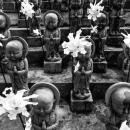 専教寺の水子地蔵
