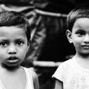 Big-eyed Brothers