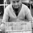 Old Woman And Warp Thread