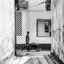 Man And Wheelbarrow @ Sri Lanka
