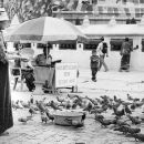 Woman And Pigeons @ Nepal