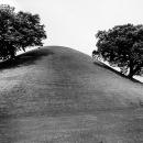 Two Trees Growing On The Tomb Mound @ South Korea