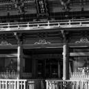 画家と根津神社の桜門