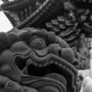 関帝廟の狛犬