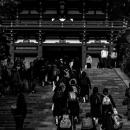 鶴岡八幡宮への階段を登る女子高生たち