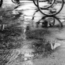 濡れた路面を走るサイクルリクシャー