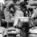 Men And Piled-up Bags