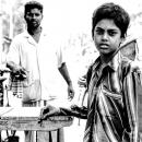 Boy Standing Beside A Cart