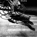 Ao Dai, Bicycles And Shadows