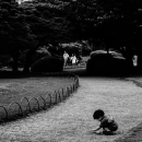 Little Boy Playing In The Path