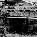 釣り人と橋