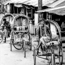Cycle Rickshaws Were Lined Up By The Roadside