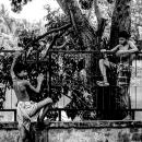 Climbing Boy And Descending Boy
