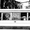 Windows Of A Local Bus