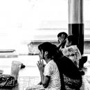 Praying Woman In Shwedagon Paya