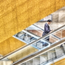 Businessman On The Escalator