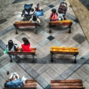 Six Benches