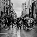 Pedestrians Were Crossing