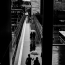Young Couple And An Umbrella