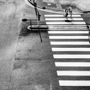 Family On The Pedestrian Crossing