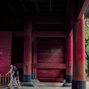Red Pillars In Zojo-ji