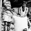 Three Laborers Were Working