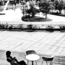 Young Man On The Terrace