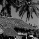 藁葺の家と傘