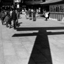 Worshipers And Shadow Of Torii