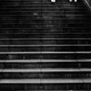 Legs Descending The Stairway
