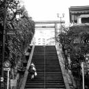 Stairway In Yushima Tenman-Gu