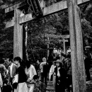 People Passing Through The Torii