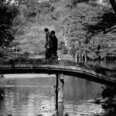 Bridge In Rikugien Garden @ Tokyo