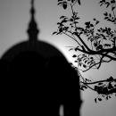 Silhouette Of Nicolai-do Cathedral