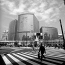 Figure In Sukiyabashi Crossing @ Tokyo