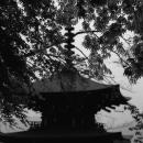 Three-storied Stupa In Okadera