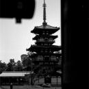 East Pagoda In Yakushi-ji @ Nara