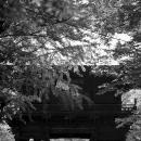 九品仏の仁王門