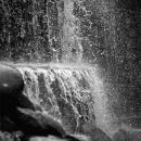 Waterfall In Shinjuku Central Park @ Tokyo