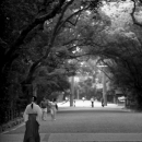 Female Attendant Walking In Atsuta Jingu