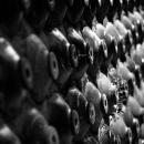 Slope Filled With Bottles