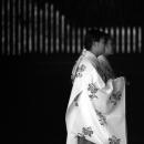 Two Mediums In Meiji Jingu
