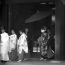 Wedding In Meiji Jingu @ Tokyo