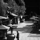 Figure In The Precinct @ Tokyo