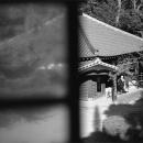 Scene From A Window @ Tokyo