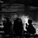 池の畔に母とベビーカー